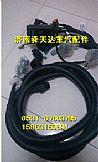 豪沃潍柴汽缸体电脑板线束发动机线束原厂厂家定做批发/13052126