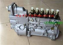 5260149 6PH108高压油泵/5260149 6PH108