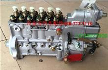 6PH111A  5260153高压油泵/6PH111A  5260153