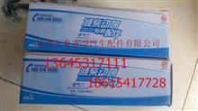 潍柴WD615 欧Ⅱ进气门612600050073/612600050073