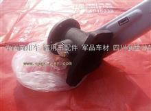 东风天龙大力神雷诺发动机排气制动阀总成/D5010550606