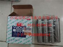重汽豪沃轻卡配件530-1007015气门导管/530-1007015