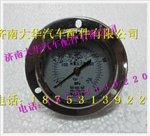 陕汽德龙M3000高压压力表SZ956000843/SZ956000843