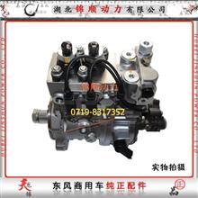 东风DCI11发动机雷诺高压油泵(进口)D5010553948/5010553948