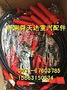 潍柴WP10LNG CNG高压点火线 原厂厂家价格批发/612600190948