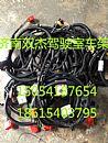重汽豪沃15 16款原厂电动车门升降器线束 原厂电动线束 插头/重汽豪沃15 16款原厂电动车门升降器线束 原厂
