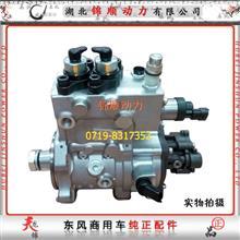 东风雷诺高压油泵D5010222523/0445020219/D5010222523/0445020219