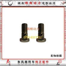 东风雷诺发动机管接头螺栓D5010412979/D5010412979