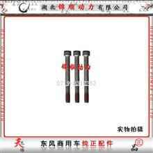 东风雷诺风扇皮带涨紧轮固定螺丝D5003009457/D5003009457
