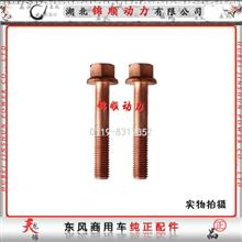 东风雷诺发动机(国4)排气岐管螺栓 D5010224309/D5010224309