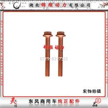 东风雷诺发动机增压器螺丝(新式国四)D5010224487/D5010224487