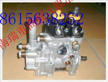重汽日本进口D10发动机高压油泵/R61540080101