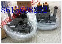 重汽日本进口D12发动机高压油泵/VG1246080050