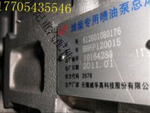 潍柴发动机燃油泵612601080176