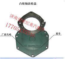 VG1500010008A-凸轮轴齿轮盖