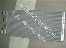 中国重汽豪沃A7暖风散热器总成WG1664820053/WG1664820053