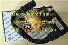 玉柴低压燃料切断阀 J57A0-1113301A/J57A0-1113301A