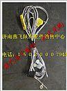 济南燕飞陕汽配件销售陕汽德龙工作照明灯驾驶室电线束/DZ93189773412