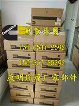 康明斯M11喷油器油杯3087649