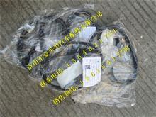 重汽曼发动机MC07空调皮带082V96820-1248/082V96820-1248