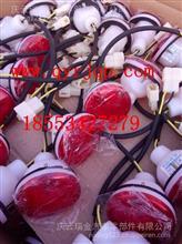 陕西同力宽体矿用车配件油封轴承33024/06.32499.0129