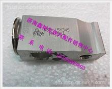 DZ13241821115陕汽德龙F2000膨胀阀/DZ13241821115