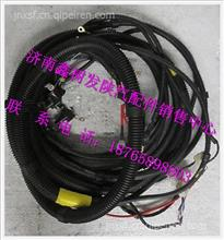JZ91159770002陕汽德龙奥龙发动机电线束(2KW发电机)/JZ91159770002