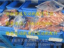 61560110104潍柴发动机排气管螺栓/61560110104