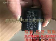4994519模块批发零售康明斯发动机零部件蓄电池模块/4994519
