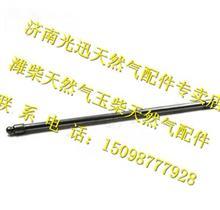 重汽T10天然气CNG发动机气门推杆总成/VG1096050035