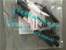 D4300-3705070玉柴天然气发动机高压导线/D4300-3705070