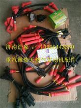 612600190655潍柴WP13天然气发动机高压导线/612600190655