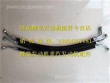 612600081887潍柴WD10G发动机机油润滑油管/612600081887