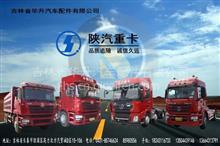 吉林省华升汽车配件有限公司(华升汽配)/专业销售陕汽德龙系列车型事故车配件