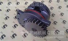 康明斯M11机油泵工程机械发动机配件 机油泵/4003950