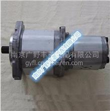泵车上装专用配件 泵车马祖奇双联齿轮泵/5030 322