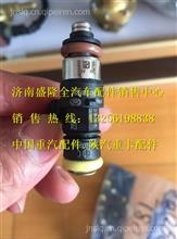 潍柴博世系统喷射阀喷嘴0280158828