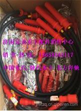 612600190948潍柴WP10LNG CNG高压点火线/612600190948
