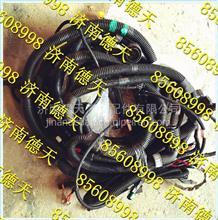 陕汽德龙新M3000 原厂发动机、变速器底盘线束/DZ96259778209