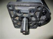 东风凯普特  多利卡齿轮泵/CBNZQ-F563BLHL