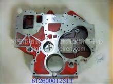 重汽、陕汽发动机配件批发 潍柴WD12电喷发动机齿轮室/612600012313