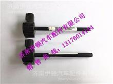 WG9925530012中国重汽豪沃A7水位传感器总成/WG9925530012