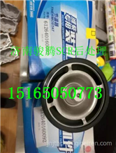 潍柴天然气发动机博世系统节温器芯 SCR尾气后处理配件/612640160092