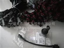 优势现货供应617计量单元电磁阀和接头线/0928400617