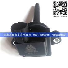 重汽MT13发动机202V25919-6002点火线圈/202V25919-6002