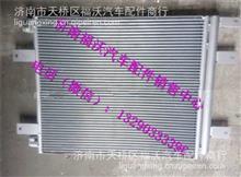 重汽新斯太尔D7B冷凝器总成/WG1682827060