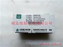 【3035738】重庆康明斯K19燃油泵电磁阀 原装K19燃油阻断开关/3035738