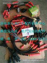 潍柴WP13天然气发动机高压导线/612600190655