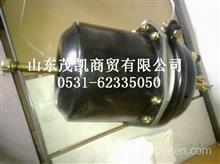 TZ56077000271重汽豪威60矿大江迈克桥左制动器室/TZ56077000271