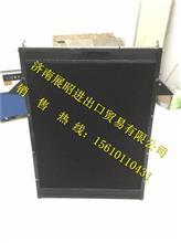1301033000006陕汽通力矿用车散热器/1301033000006